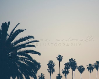 Echo Park Photography,  Los Angeles, Palm Tree Photography, California, vintage print, Bohemian Wall art, Large Art, Poster size, vintage