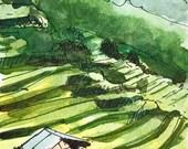 Vietnam, Vietnamese art, Vietnam art, Watercolors Paintings Original, watercolor painting, Landscape, hut, terrace fields, sketch