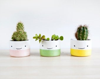 Ceramic planters for succulent, Ceramic plant pot, Ceramic small planters set, Cactus planter, Pottery planter, Modern planter with face pot