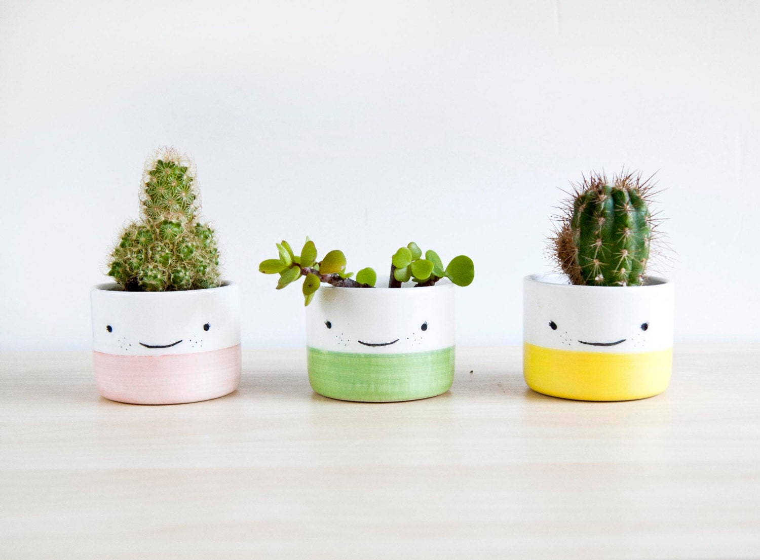 Ceramic Planters For Succulent Ceramic Plant Pot Ceramic