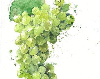 Original watercolor painting-grapes food illustration, kitchen decor-9 6/8x13 1/2""