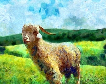 Art Print -High Quality- Oil Painting- Angora Goat - choose your size