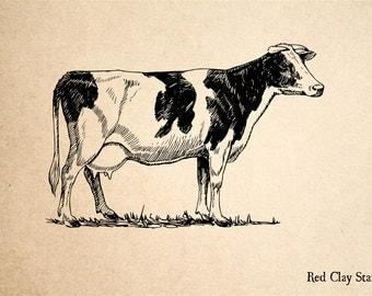 Holstein Milk Cow  Rubber Stamp - 2 x 2 inches
