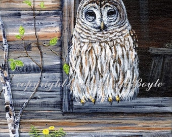 CUSTOM ORDERS - WILDLIFE; 8 x 10 inch stretched canvas, birds, wild animals,wilderness, garden, nature, flowers,