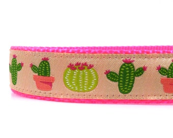 Mexican cactus on Pink Dog collar