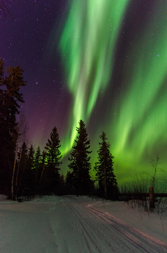 Purple and green northern lights