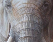 African Dust - Original Elephant Painting | Wildlife Art by Roberto Rizzo