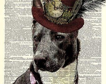 Steampunk CUSTOMIZE Your Pet with a Steampunk Hat.  Print has the look of an Ink drawing with color.  Art print on dictionary page.