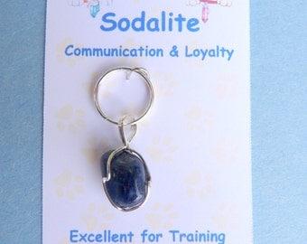 Sodalite Pet Gemstone Silver Pendant - Communication & Loyalty