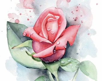 Fresh Pink Rose Watercolor Painting - Fine Art Print by Emily Luella