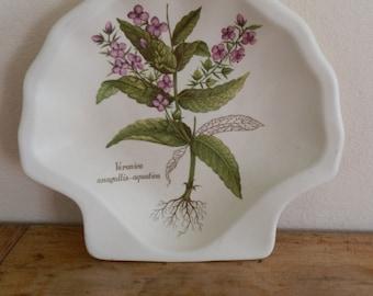 Vintage 1980's Poole Pottery Country Lane Scallop Shaped Dish: Veronica Anagallis-Aquatica