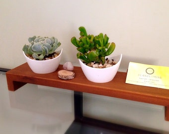 Office desktop Succulent planters/ business card & cell phone stand/ indoor planter/modern desktop decor/cacti planter/cell phone dock