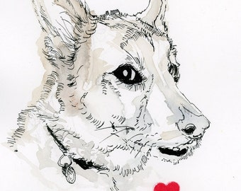 Pet Portrait Sketch