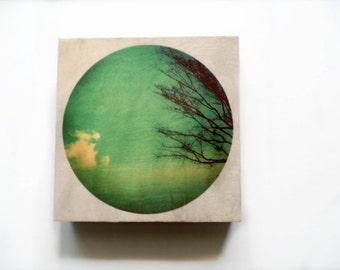 "Wood wall art hand-made print on 8x8"" Wood Panel art prints on wood original lomography Wood wall art nature photography"