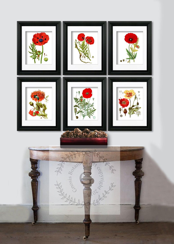 red poppy decor botanical prints red flowers poppy wall art. Black Bedroom Furniture Sets. Home Design Ideas