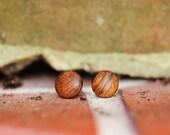 Upcycled Cocobolo Wood Stud Earrings