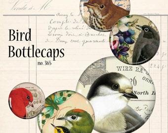 Birds Bottlecaps Circles Vintage Digital Collage Sheet Instant Download Mixed Media Junk Jewelry Cabochon Bezel Pendant Images dcs365