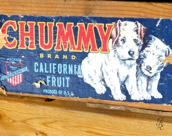 Chummy Fruit Crate