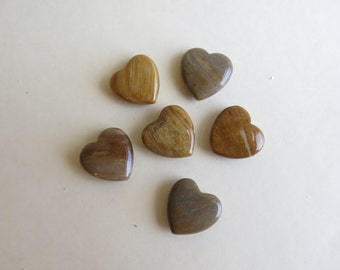 "3/4"" Petrified Wood Heart"