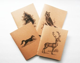 Mini Notebook Set, Bullet Journals, Woodland Animal Notebooks, Blank Journals, Pocket Notebooks, Jotters, Scientific Notebooks, Cahiers