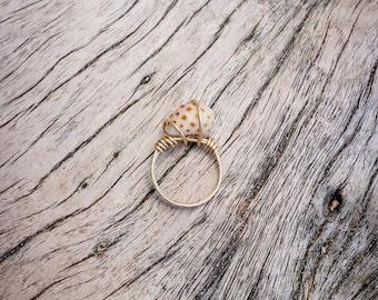 Hawaiian Shell Gold Ring