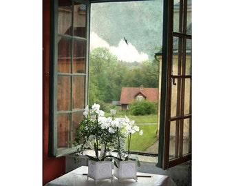 Window Photo Art, Rustic Decor,  Country Farmhouse Decor, Window Art, Open Window Photo, Shabby Chic, Home Decor, Wall Art, White Flowers