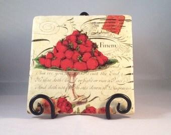 Strawberries Trivet ( hot pad )
