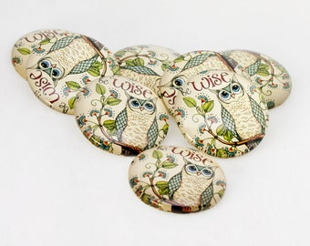 6x 30mm Wise Owl Design Cabochons