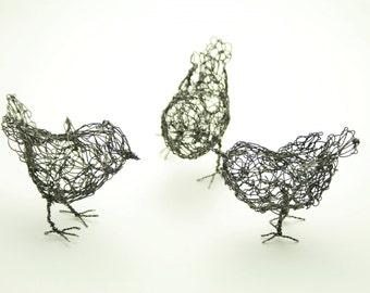 Trio of little birds