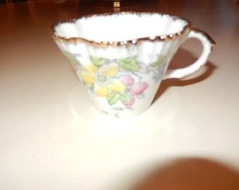 ENGLAND ALBA SALISBURY Teacup