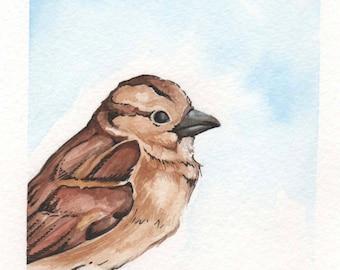 Brown Bird | 4x6 Original Watercolor