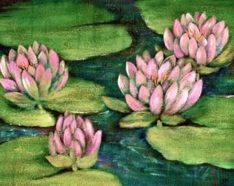 Water Lily Painting  Water Lilies Art Print  Pink Waterlilies  Acrlic Print
