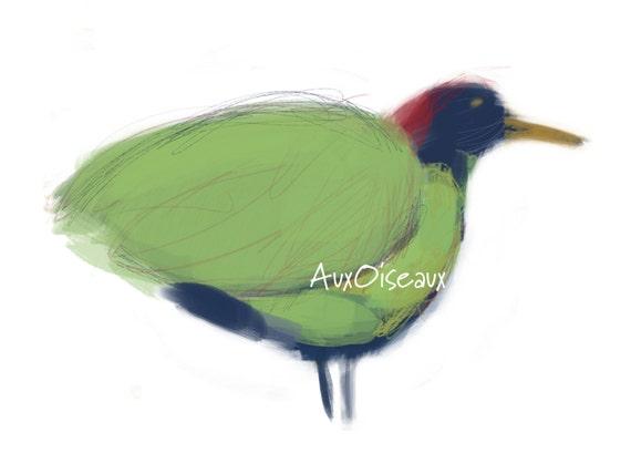 Oiseau vert bleu et rouge dessin num rique original for Oiseau vert et rouge