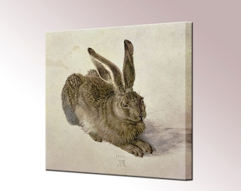 Young Hare Albrecht Durer Canvas Wall Art Print Picture Framed Wall Decor Ready To Hang