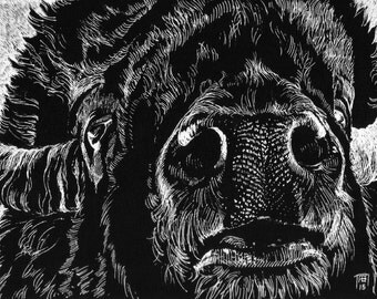 "Original Ball-pen Drawing on Black paper board, "" Bison Snout"", 9'x12'"