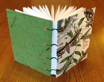 Moth Blank Nature Journal