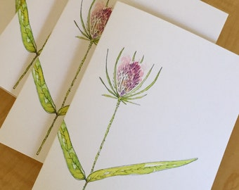 Watercolor Floral Note Cards - Wildflower Blank Note Cards - Teasel Weed Cards - Botanical Watercolor Note Cards - Set of 8