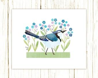 Blue Jay Print -- bird art -- bird art 52 birds stephanie fizer coleman illustration