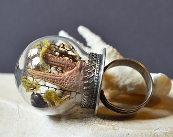 Davy Jones Locker Ring Made With Real Shells