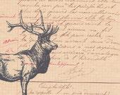 NEW.art print.calligraphy.original handwritten.paper ephemera.paris.french.font.deer.antique.vintage.retro.home decor.unique.child,eco.wall