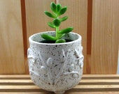 "Tiny Planter - Cache Pot for 2"" plant - Hand Thrown Stoneware Pottery"