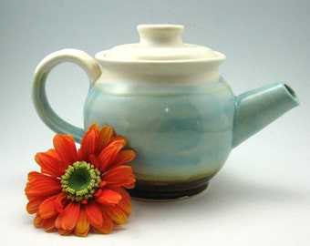 Handmade Stoneware Teapot - 2 cup - Ready to Ship