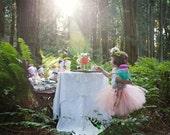 Sweet Little Flower Girl *Short* TuTu(small 6-24mo) CUSTOM COLOR tutu, Flower Girl tutu, Baby tutu, Custom Girls tutu, Birthday tutus, Weddi