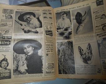 Vintage Newspaper lot. 1951