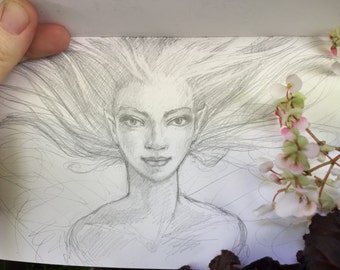 Fairy portrait by Renae Taylor (original drawing)