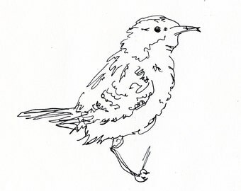 Bird Art Print - Wren, songbird, line drawing, pen ink, giclee print