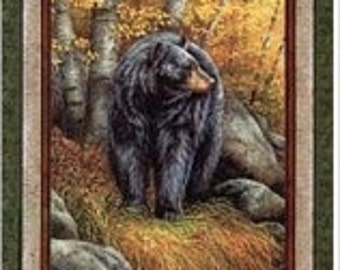 Bear Panel Kings Dominion Wildwings 1 Panel