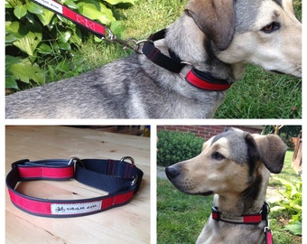 Martingale Dog Collar-Upcycled bike inner tube