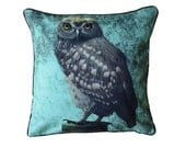 XL Cushion cover for throw pillow with bird - Little Owl celadon - 24x24inch // 60x60cm
