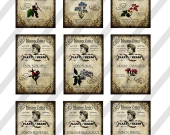 Digital Collage Sheet, Halloween Potion Labels, Plants and Herbs, 2 x 3 inches, 2 Sheet, 18 Labels,(Sheet No. FS240) Instant Download